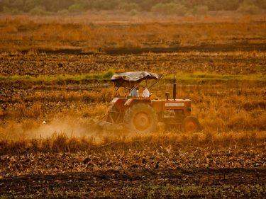 農業區塊鏈5種應用層面和2個實際案例